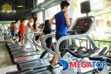 Top11 phòng tập gym tốt nhất Quận Hà Đông
