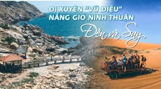 Top 5 hãng Xe limousine đi Ninh Thuận uy tín, chất lượng nhất| Đặt nhanh| 19006772